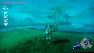 Zelda: Игрок BOTW столкнулся с проблемой странного дракона